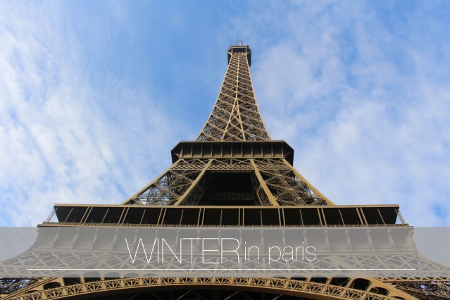 to-do-in-paris-eiffel-tower-lunch-012 cover