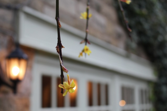ox-pasture-hall-scarborough-luxury-hotel-001