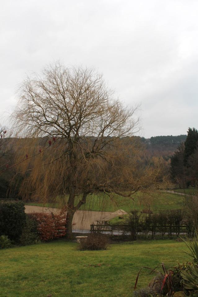 ox-pasture-hall-scarborough-luxury-hotel-022